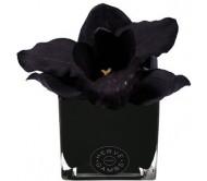 Ароматический диффузор чёрная орхидея в черном кубе из стекла Herve Gambs