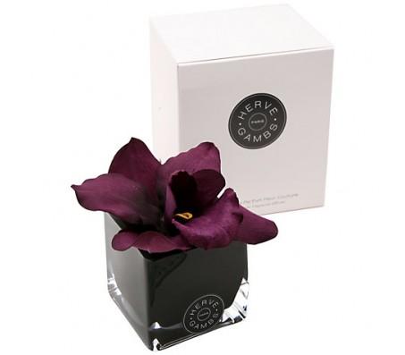 Ароматический диффузор Сливовая орхидея в черном кубе из стекла Herve Gambs