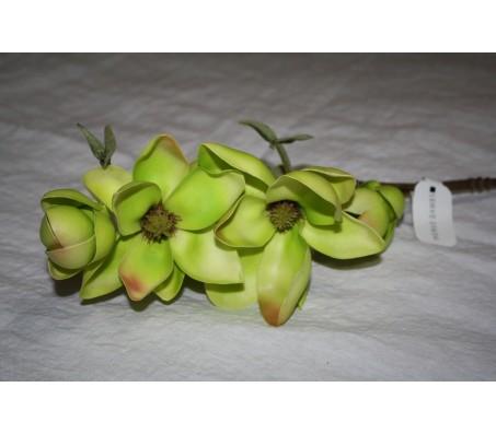 Искусственные цветы магнолия зелёная Herve Gambs (Франция) 89см